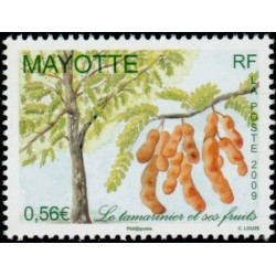 Timbre Mayotte n°223