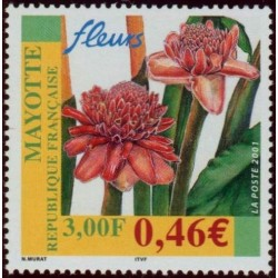 Timbre Mayotte n°107